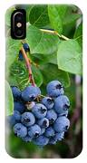 Michigan Blueberries IPhone Case