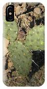 Mickey Mouse Cactus IPhone Case
