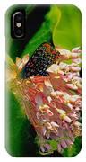 Milking Milkweed IPhone Case