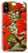 Milkwood Tree Blossoms In Donkin Reserve In Port Elizabeth-south Africa IPhone Case