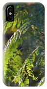 Mimosa At Sunset IPhone Case