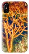 Mineral Branches Hot Springs IPhone Case