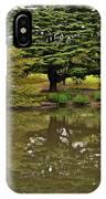 Mirror Image IPhone Case