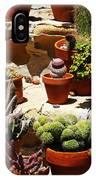Mission Cactus Garden IPhone Case