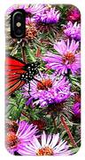 Monarch Among The Asters IPhone Case
