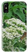 Monarch Butterfly 47 IPhone Case