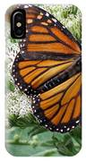 Monarch Butterfly 52 IPhone Case