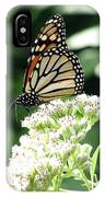 Monarch Butterfly 58 IPhone Case