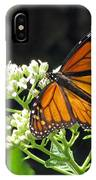 Monarch Butterfly 59 IPhone Case