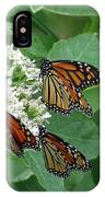 Monarch Butterfly 63 IPhone Case
