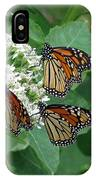Monarch Butterfly 64 IPhone Case