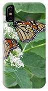 Monarch Butterfly 67 IPhone Case