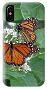Monarch Butterfly 68 IPhone Case