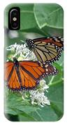 Monarch Butterfly 69 IPhone Case