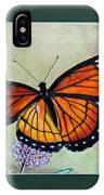 Viceroy Butterfly By George Wood IPhone Case
