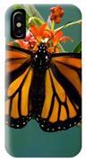 Monarch Butterfly Danaus Plexippus IPhone Case