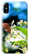 Monarch Butterfly I IPhone Case