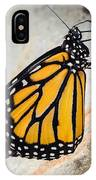 Monarch Butterfly Just Emerged From Her Chrysalis IPhone Case