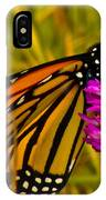 Monarch Butterfly On Flower IPhone Case