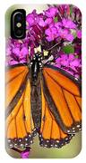 Monarch Hangs On To Buddleia IPhone Case