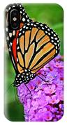 Monarch On A Butterfly Bush IPhone Case