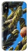 Monkey Puzzle Tree B IPhone Case
