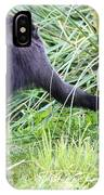 Monkey Showing Red Bottom IPhone Case