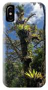Montagne D'ambre National Park Madagascar 4 IPhone Case