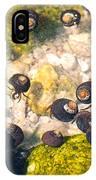 Monterey Bay Tide Pools IPhone Case