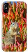 Monterey Squirrel IPhone Case
