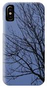 Moon And Bare Tree IPhone Case