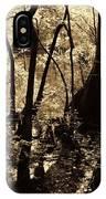 Moores Creek Swamp IPhone Case