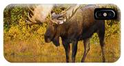 Moose In Glacial Kettle Pond  IPhone Case