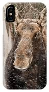 Moose Pictures 88 IPhone Case