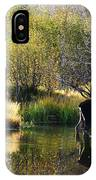 Moose Reflection IPhone Case