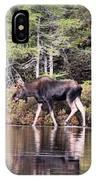 Moose_0586 IPhone Case