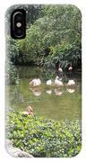 More Pink Flamingos IPhone Case