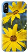 Morning Sunflowers IPhone Case