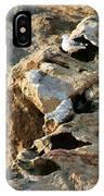 Morro Rock Nesting IPhone Case