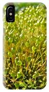 Moss And Fruiting Bodies - Green Lane Pa IPhone Case