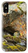 Moss And Lichens In The Scottish Highlands IPhone Case