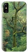 Moss Covered Tree Central California IPhone Case