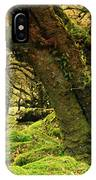 Moss Covered Trees In A Forest IPhone Case