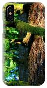 Moss On The Evergreens IPhone Case