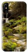 Mossy Falls 1 IPhone X Case
