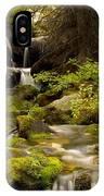 Mossy Falls 1 IPhone X Case