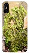 Mossy Rock Abstract 2013 IPhone Case
