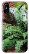 Mossy Rock And Fern IPhone Case