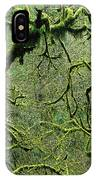 Mossy Trees Leafless In The Winter IPhone Case