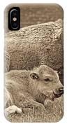 Mother Buffalo And Calf Sepia IPhone Case